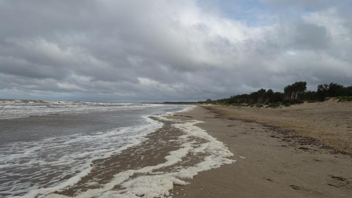 В Северодвинске во время купания чуть не утонули трое подростков