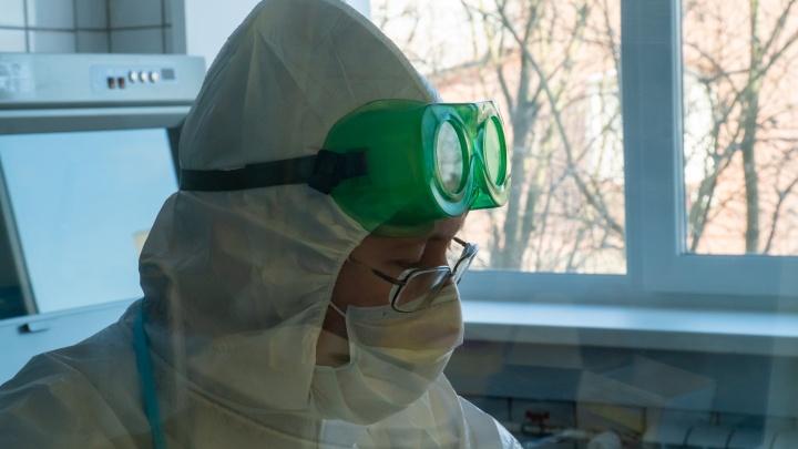 В Архангельской области за сутки выявили 246 случаев коронавируса