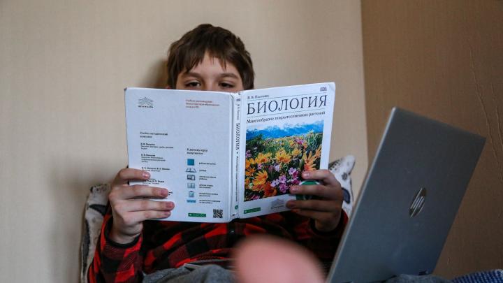 Стало известно, как будут работать детские сады и школы в Башкирии
