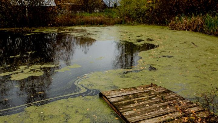 Вылетел с перекрёстка: в Ярославской области в пруду нашли автомобиль с двумя трупами внутри