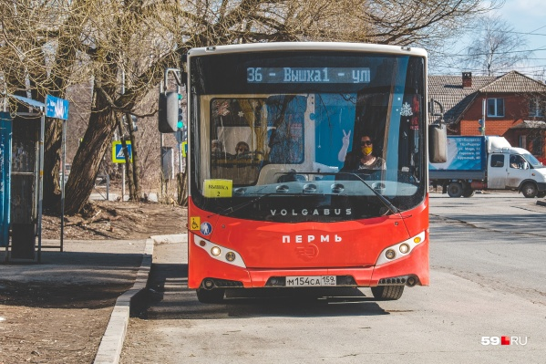 Больше автобусов выйдет в том числе на маршрут № 36