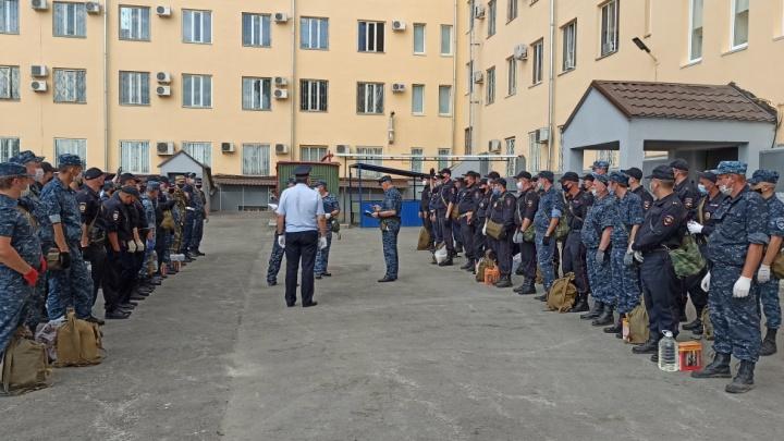 Полицейских Волгограда подняли по тревоге: природные пожары бушуют в семи районах региона