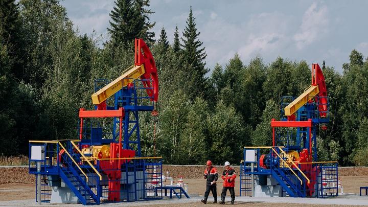 Пермские нефтяники «оцифруют» 60% добычи за пять лет