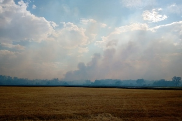 Хлеб от огня спасали добровольные пожарные