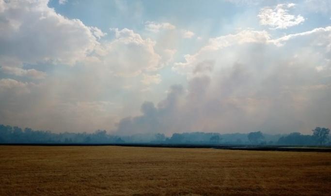 В Волгоградской области разряд молнии сжег поле пшеницы