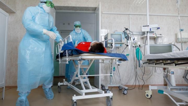 Ещё 109 новосибирцев заболели коронавирусом