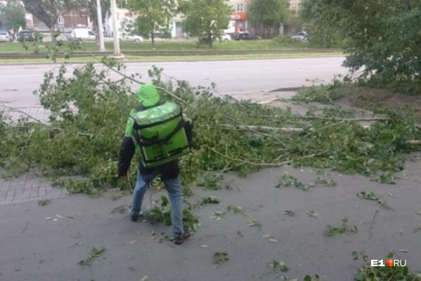 Горожане уверены, что такого в Екатеринбурге еще не было, но ученые говорят, что это не так