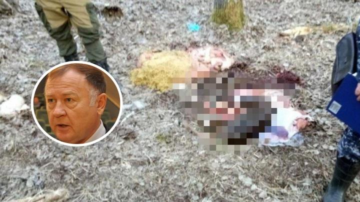 «Единая Россия» приостановила членство экс-депутата, подозреваемого в убийстве беременной лосихи