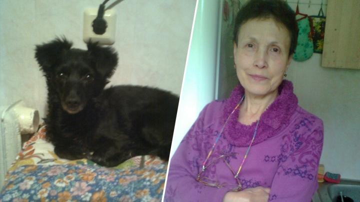В Нижнем Новгороде пропала пожилая женщина с собакой