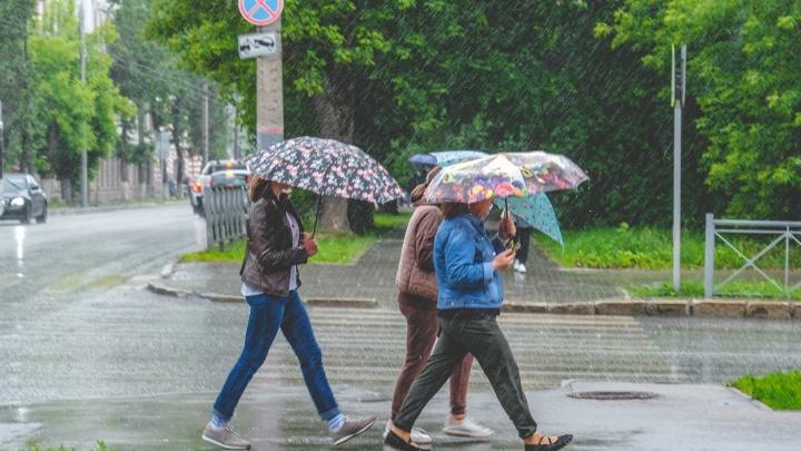 Синоптики рассказали, какой будет первая неделя осени в Прикамье