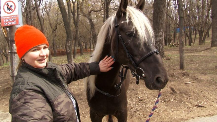 «Пришлось обменять коня на сено»: интервью с директором конного клуба
