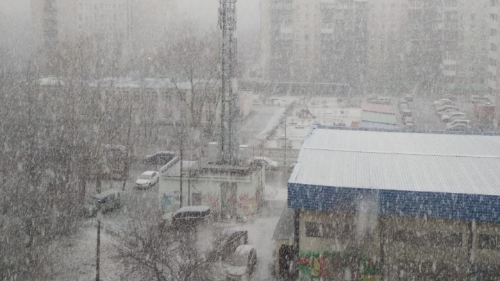 Ждите слякоть: Екатеринбург накрыло снежной периной