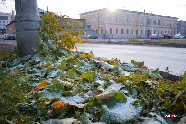 Сегодня ночью в Челябинской области выпал снег