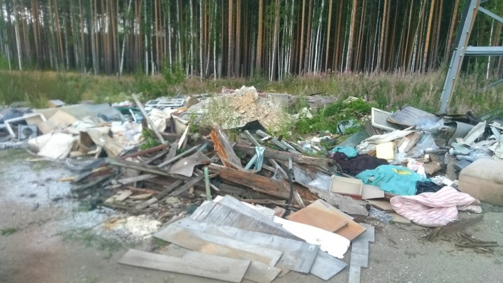 В Екатеринбурге на мусорке нашли выброшенные медицинские документы