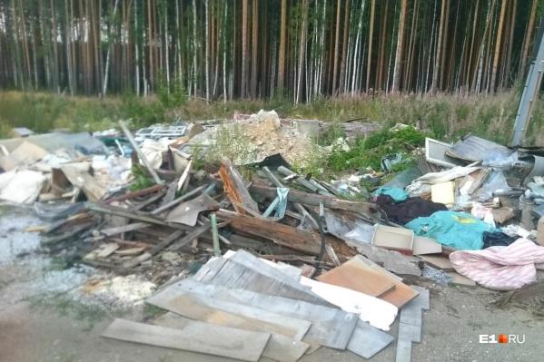 Екатеринбуржец обнаружил несколько пакетов с медицинскими документами