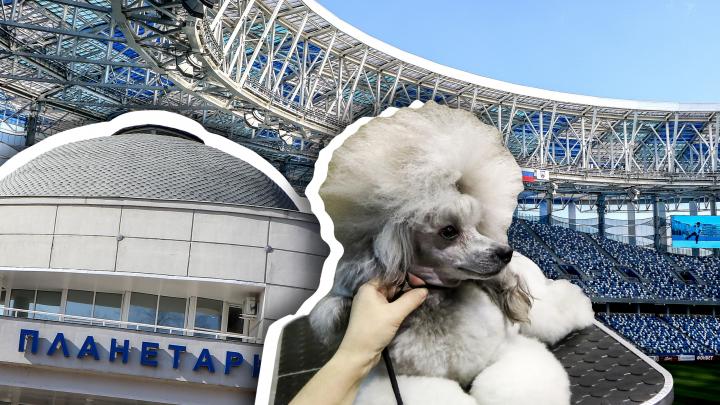 Выходные в Нижнем Новгороде: авторские экскурсии, футбол и «Ворсменский клинок»
