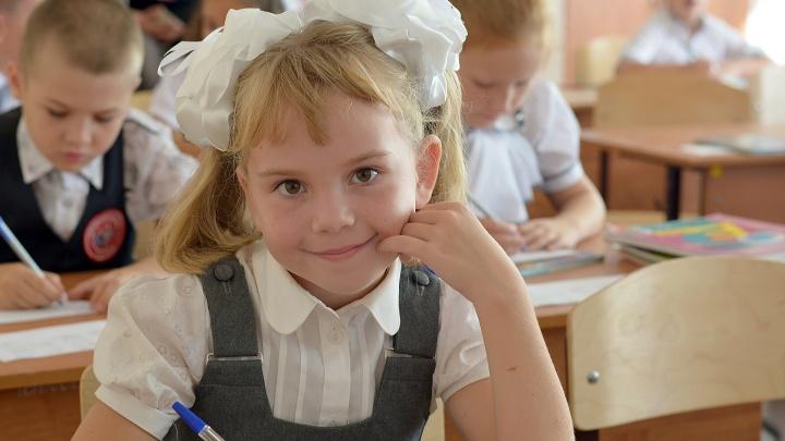 Систему образования Омской области высоко оценили в Рособрнадзоре