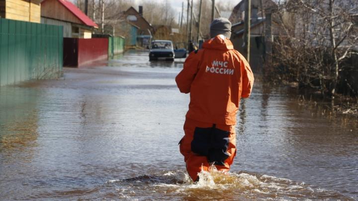 Ученые из Москвы проводят опрос, чтобы определить границы зон затопления в Заостровье