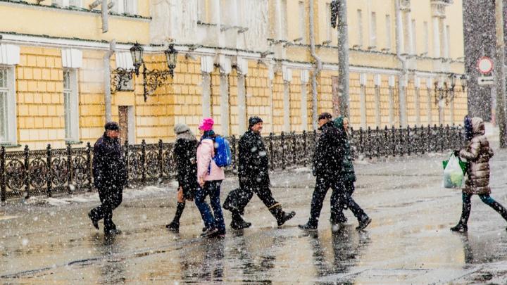 Штормовое предупреждение для Ярославской области: когда регион накроют ветер и мороз