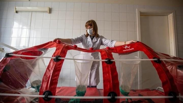 В Прикамье скончался еще один пациент с коронавирусом