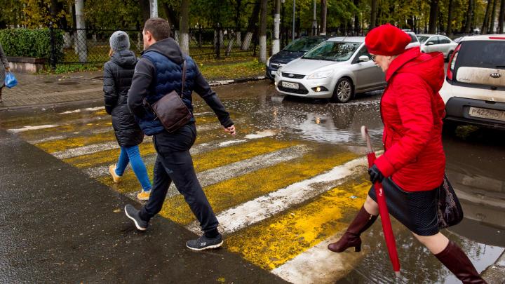 «Культура останется на том же уровне»: ярославцы высказались о снижении скоростного режима