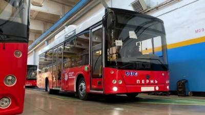 Минтранс ищет перевозчика на автобусные маршруты из Перми в Краснокамск