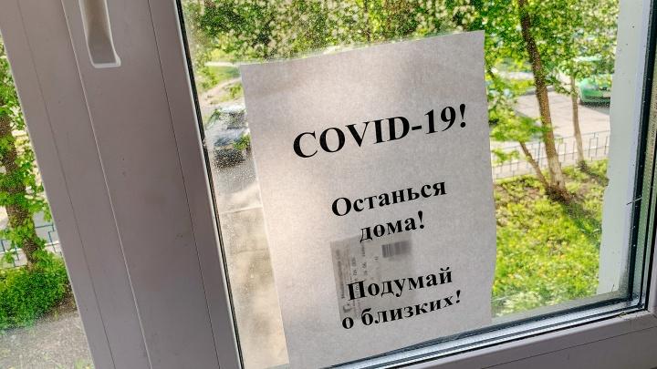 Что нас ждёт осенью? И накроет ли Новосибирск второй волной? Прямой эфир с вирусологом о COVID-19