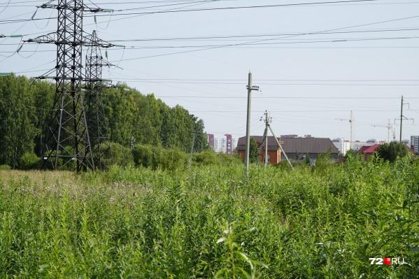 Деревня Патрушева соседствует с региональным парком «Тополя»