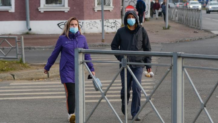 За сутки в Архангельской области выявили 179 случаев COVID-19. Данные регионального оперштаба