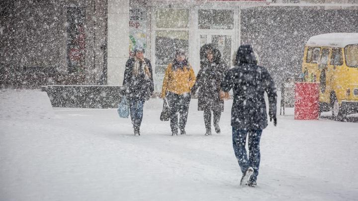 Новосибирск накроет порывистым ветром и мокрым снегом