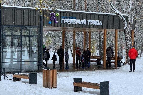 Посетителей парка просят не кататься на санках и ледянках