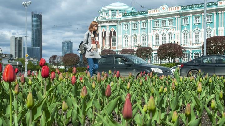 В Екатеринбурге потеплеет до +18 °С