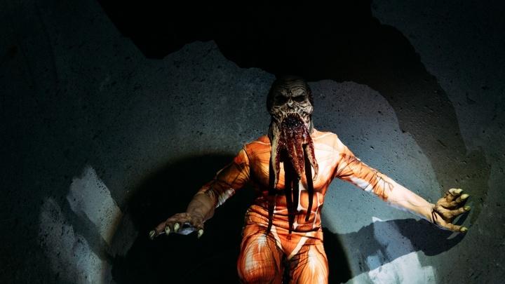 Омские сталкеры проводят игры на заброшенном заводе. Там есть мутанты и своя валюта