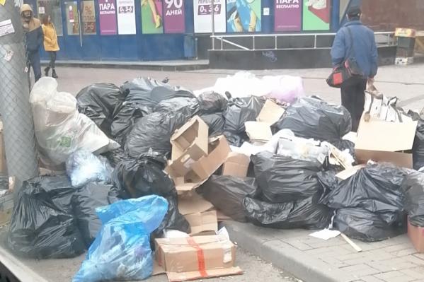 Кучу мусора заметили примерно в 8 утра