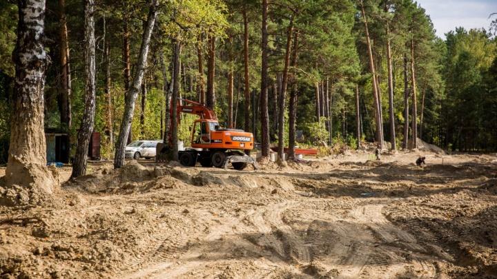 «Вы посмотрите, что творят»: какие земли в Новосибирске готовят к точечной застройке, а леса — к вырубке
