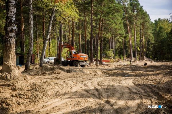Вырубка деревьев ради элитного коттеджного поселка на краю Заельцовского бора в 2016 году