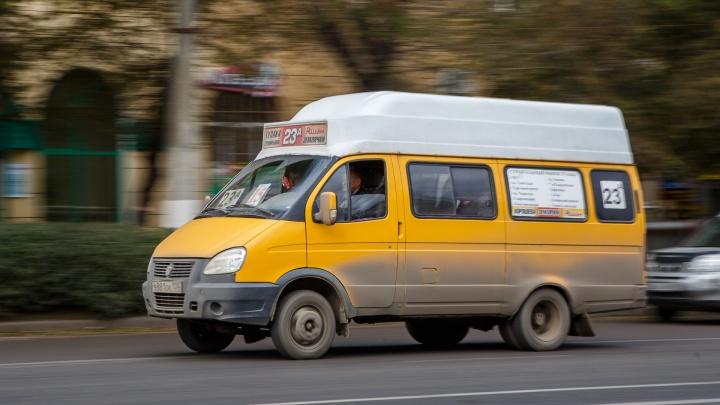 «Нам не на что покупать еду и кормить семьи»: волгоградские маршрутчики просят отпустить их на работу
