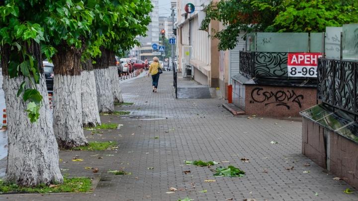 Из-за непогоды в нескольких районах Прикамья отключилось электричество