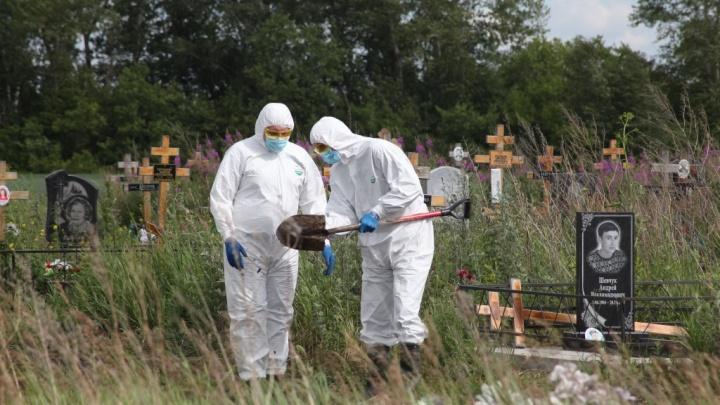 Соревнование по скоростной копке могил перенесли из Омска в Новосибирск
