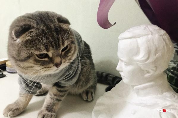 — Михаил Юрьевич, скажите, когда там закончится эта самоизоляция, — интересуется котик Персик
