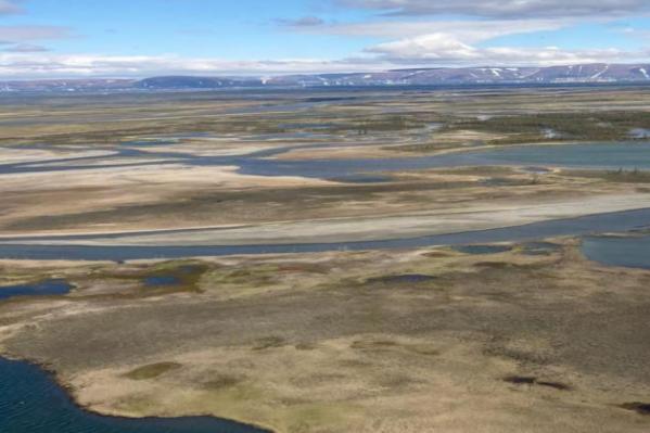 Место впадения реки в озеро Пясино