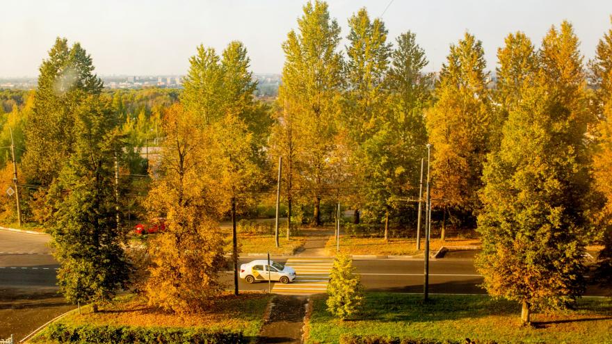 В Ярославль пришло бабье лето: сколько ещё простоит тепло