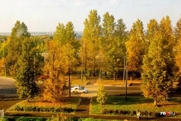 В Ярославль пришло тепло