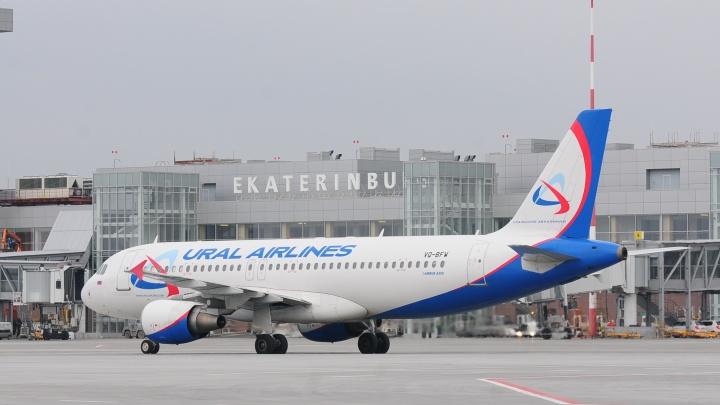 Из Екатеринбурга в Ташкент улетел самолет с мигрантами, которых выдворили из страны