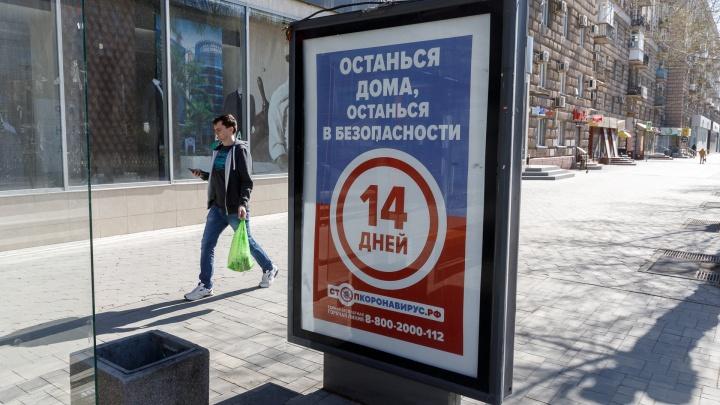 В крае снизилась скорость распространения COVID-19. 53-й день коронавируса в Красноярском крае