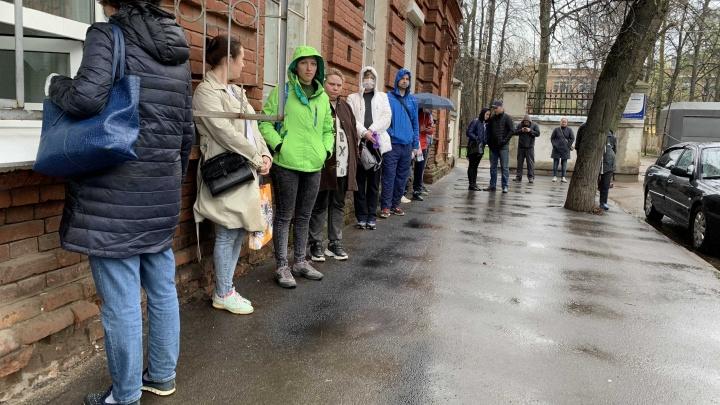 Люди идут сотнями: ярославцев атаковали клещи