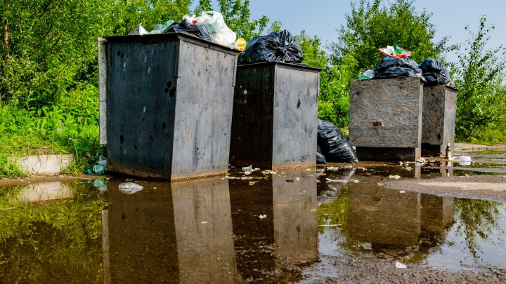 В Перми пройдет прямая линия по вывозу мусора и содержанию контейнерных площадок