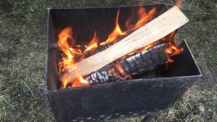 В МЧС попросили свердловчан не разводить костры и не жарить шашлык на природе