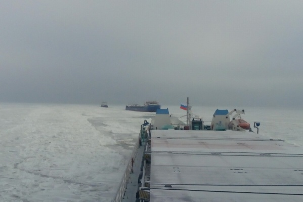 Морозы успели сковать Цимлянское водохранилище слоем льда