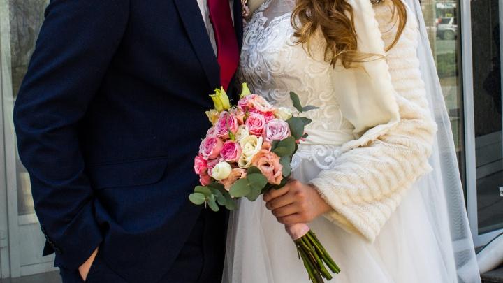 Только не сегодня: новосибирцы стали реже жениться 29 февраля